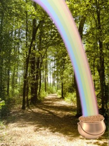Rainbow and Pot of Gold in the Woods