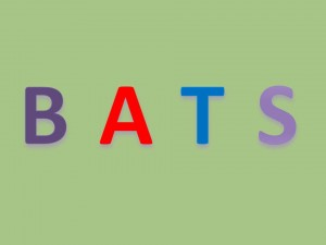 the letters b, a, t, and s are in a row to spell bats