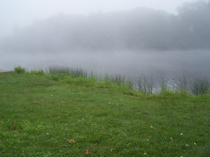 fog over a lake as seen from the shore