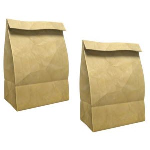two small paper bags